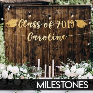 milestones_slide